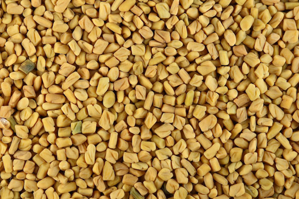 Fenugreek Wonders