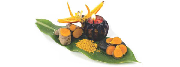 21 Popular Myths & Facts about AYURVEDA