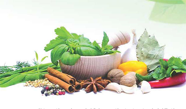 Naturopathy Education in India,  Conditions, Reforms and Recommendations