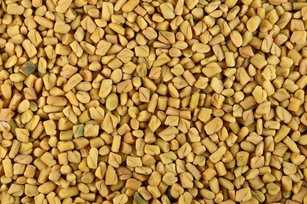 Fenugreek seeds - Fenugreek Wonders