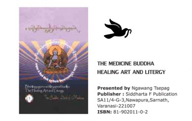 The Medicine Buddha Healing Art And Litergy