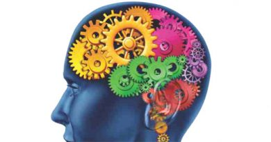 Ayurvedsutra Issue 9 Spring Special073 390x205 - Brain Gym
