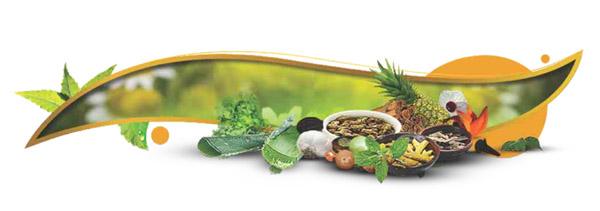 Ayurvedsutra Vol 2 Issue 343 - Plants of Arogyashram & their healing powers
