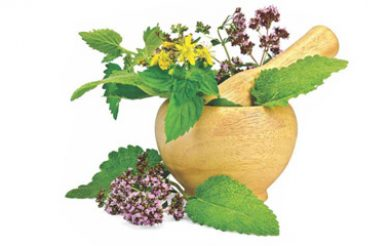 Agreement signed for commercialising Ayurvedic medicines