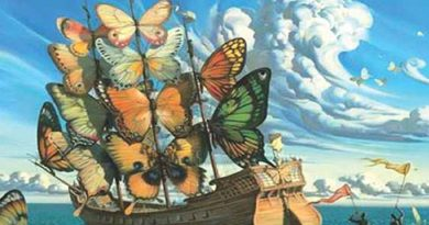 Ayurvedsutra Vol 03 issue 0102 Double Issue 128 a 390x205 - Ship with Butterfly sails
