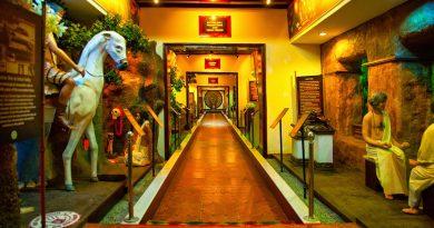 IMG 9039 390x205 - Kerala's Vaidyaratnam Ayurveda Museum: A must-visit for students of Ayurveda