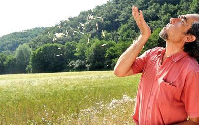 Yoga, Meditation & Empowerment in the Fields