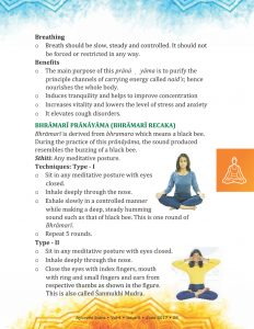 Ayurvedsutra Vol 04 issue 08 57 232x300 - Common Yoga Protocol