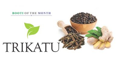 Ayurvedsutra Vol 05 issue 01 02 87 A 390x205 - Booti of the Month : Trikatu
