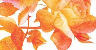 Ayurvedsutra Vol 05 issue 03 10 a 390x205 - Sadhana