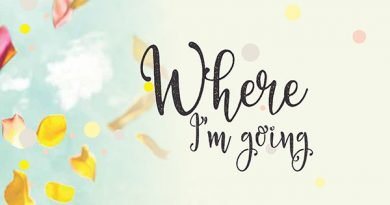 Ayurvedsutra Vol 05 issue 05 06 10 a 390x205 - Where I'm going