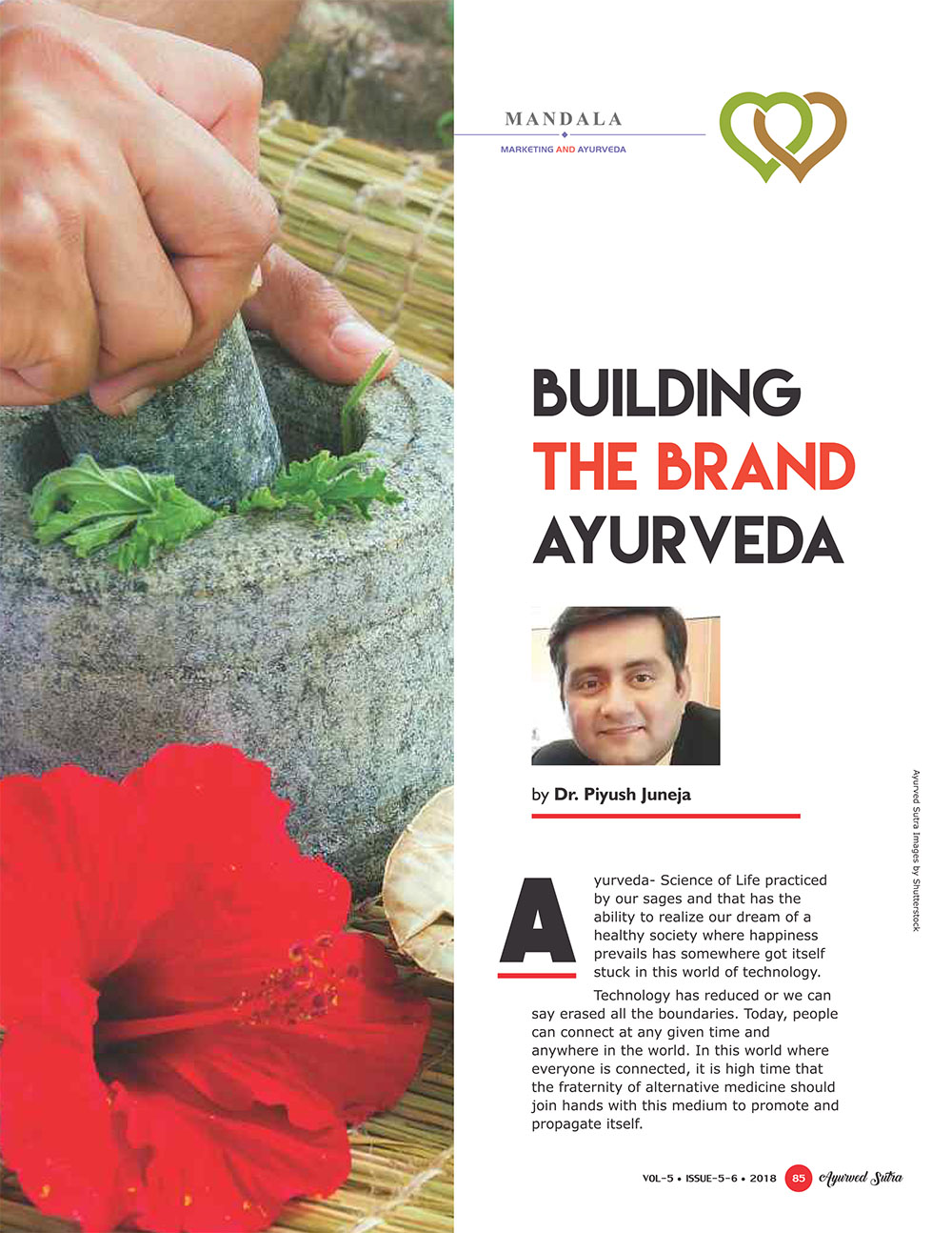 Ayurvedsutra Vol 05 issue 05 06 87 - Building the Brand Ayurveda