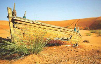 The Healing Desert