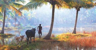 Ayurvedsutra Vol 05 issue 09 10 37 390x205 - Promote Kerala tourism in a responsible manner