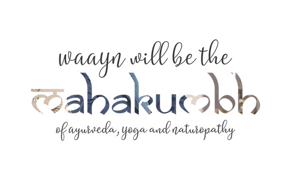 Ayurvedsutra Vol 05 issue 12 41 a - 'WAAYN will be the Mahakumbh of Ayurveda, Yoga and Naturopathy'