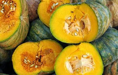 Pumpkin Festival helps struggling farmers, Ayurveda shares its responsibility