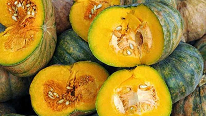 pumpkin - Pumpkin Festival helps struggling farmers, Ayurveda shares its responsibility