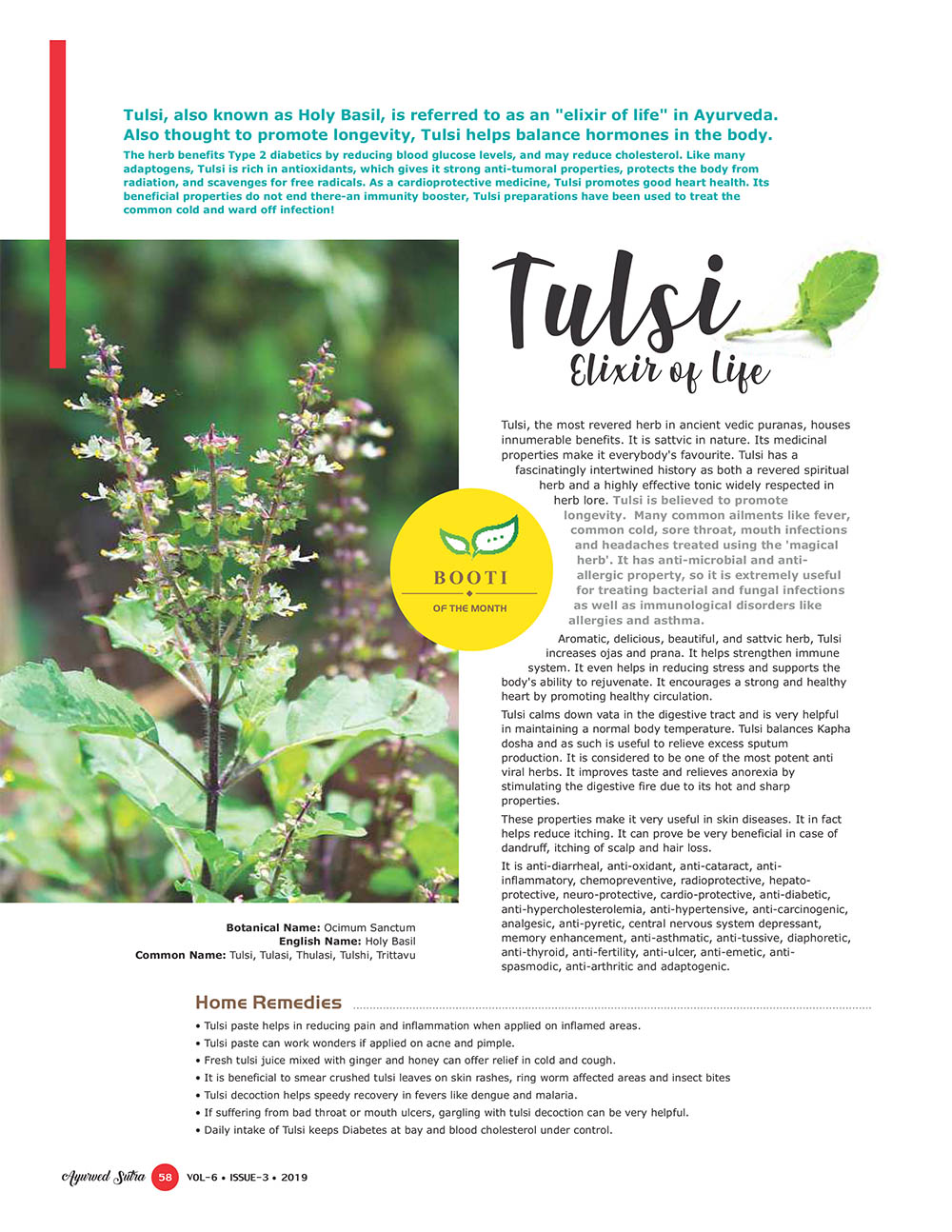 Ayurvedsutra Vol 06 issue 01 02 60 - Tulsi: Elixir of Life