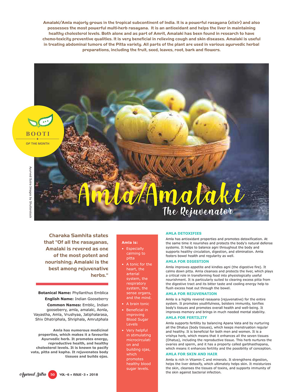 Ayurvedsutra Vol 06 issue 04 52 - Booti OF THE Month  : Amla/Amalaki - The Rejuvenator