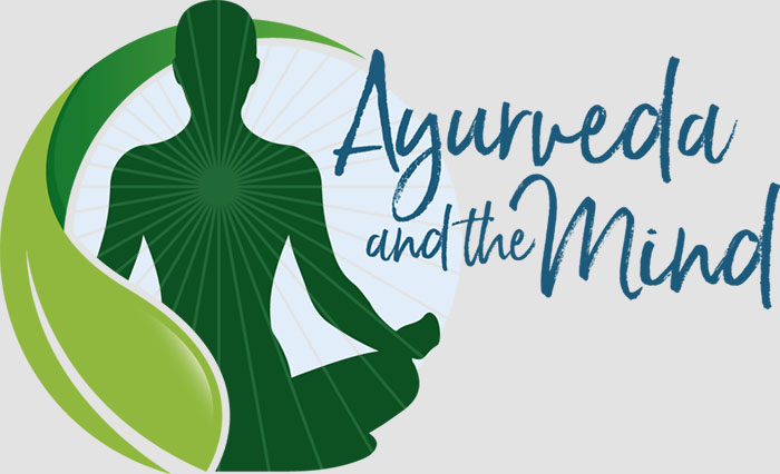 AyurvedaMind - California hosted 15th National Ayurvedic Medical Association Conference