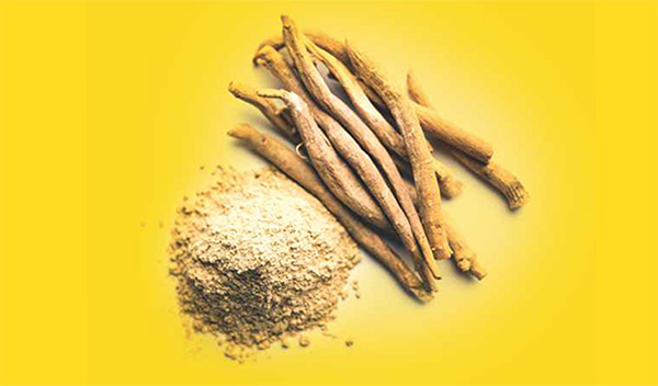 Pump your Immune System with Ayurvedic Herbs